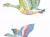 渡り鳥 カラー